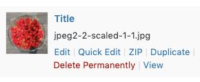 Media Library Organizer: List View: ZIP Single File