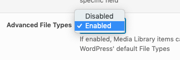 Media Library Organizer Pro: Filter: Advanced File Types: Enabled