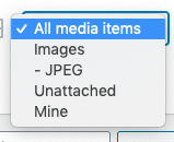 Media Library Organizer Pro: Filter: Advanced File Types