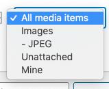 Media Library Organizer Pro: Filter: Advanced File Types